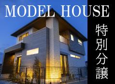 中山モデル分譲